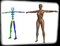 Woman and Bones Wire Composite